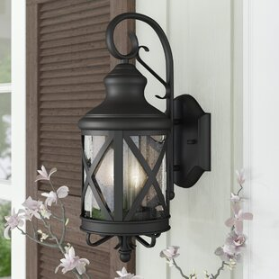 Luqi 2-Light Outdoor Wall Lantern