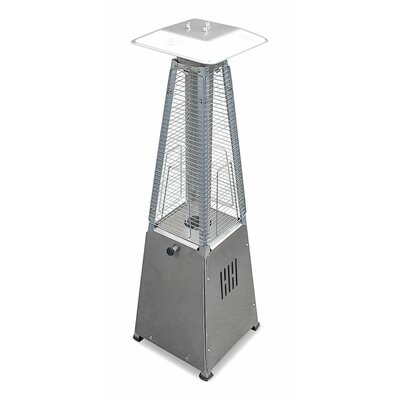 Sol 72 Outdoor Barnwell Tall 40,000 BTU Propane Patio Heater Finish: Stainless Steel