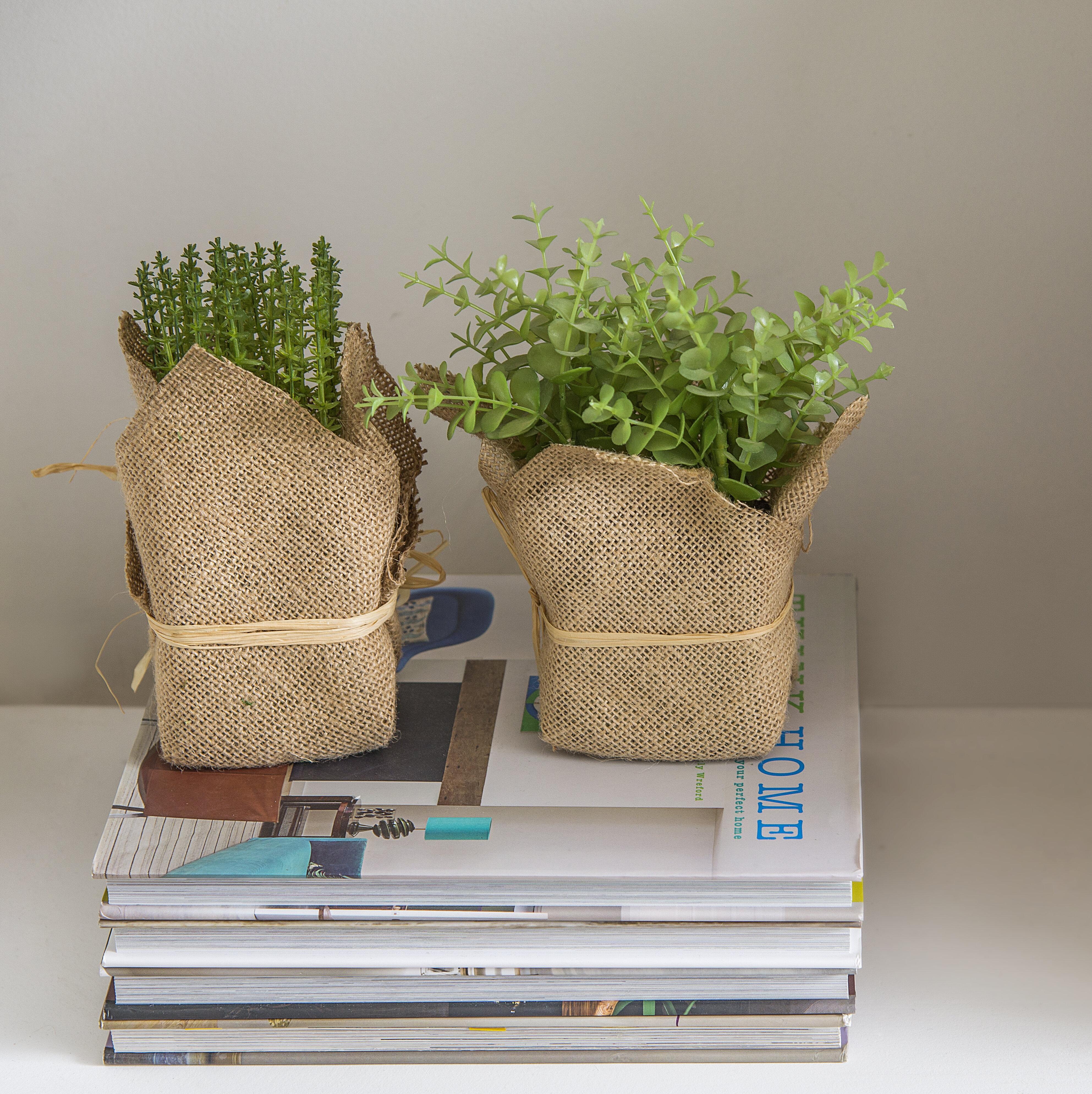 Gracie Oaks 3 Piece Faux Potted Herbs Foliage In Pot Set Reviews Wayfair