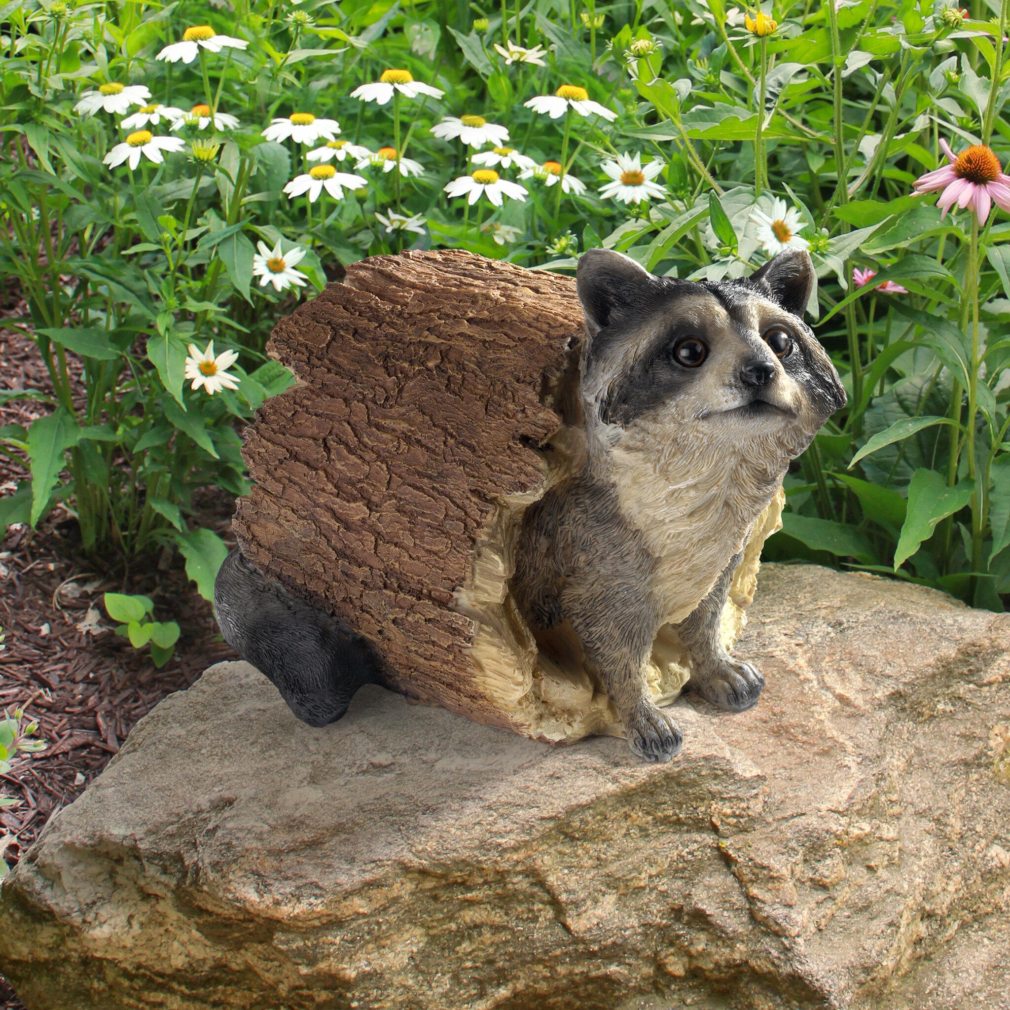 Design Toscano Raccoon Statue & Reviews | Wayfair