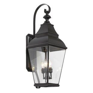 Pinevalley 3-Light Outdoor Wall Lantern b..