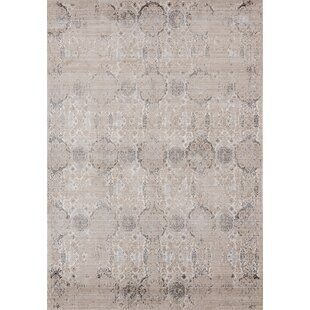 Rummond Light Taupe/Brown Area Rug by Ophelia & Co.