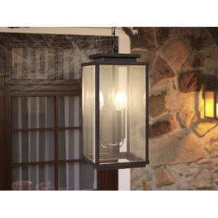 Conesville 3-Light Outdoor Hanging Lantern