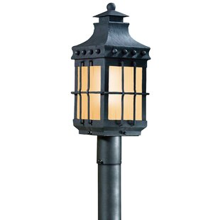 Best Review Theodore Outdoor 1-Light 13W Lantern Head By Darby Home Co