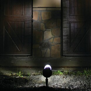 Decorative Solar 1-Light LED Spot light