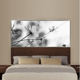 Reprise Panel Headboard by Interia Hospitality