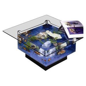 25 Gallon Aqua Coffee Table Aquarium Tank
