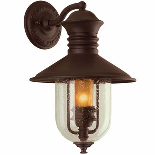 Darby Home Co Brew Kettle 1-Light Outdoor Wall Lantern
