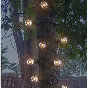 LED Concepts 25-Light 25 ft. Globe String Lights