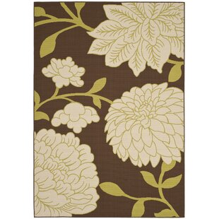 Hampton Brown/Ivory Indoor/Outdoor Area Rug