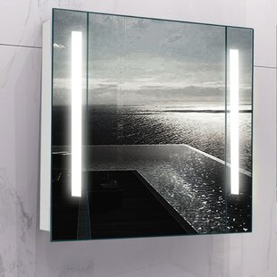 Meadow 60cm X 64cm Surface Mount Mirror Cabinet With LED Lighting By Wade Logan