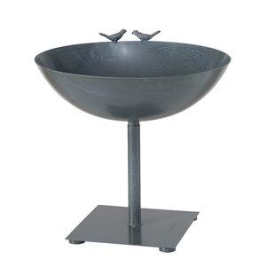 Guglielmo Bird Bath Image