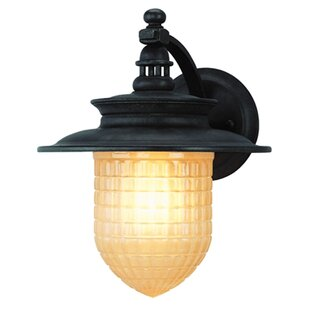 Darby Home Co Oakpark Outdoor Sconce