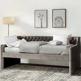 Saxis Twin Daybed by Greyleigh™