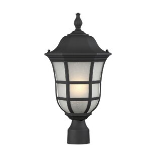 Heuser Outdoor 1-Light Lantern Head by Darby Home Co