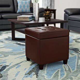 Auburndale Storage Ottoman by Latitude Run