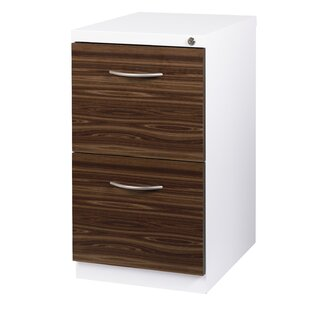 Ziegler Deep Pedestal 2-Drawer Mobile Vertical Filing Cabinet