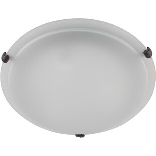 Carter 2-Light Flush Mount..