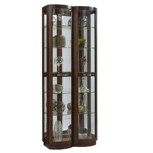 Byrnes Pacific Lighted Curio Cabinet by Red Barrel Studio