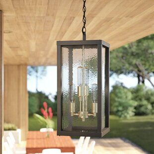 Mcdade 4-Light Outdoor Pendant