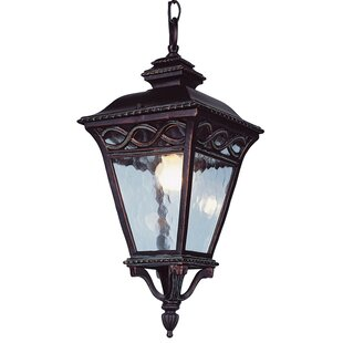 Muehlebach 3-Light Outdoor Hanging Lantern