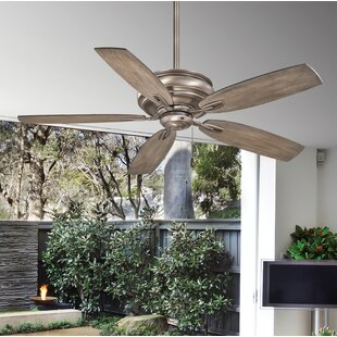 Indoor ceiling fans youll love save aloadofball Choice Image