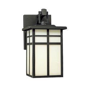 Bonfield1-Light Outdoor Wall Lantern