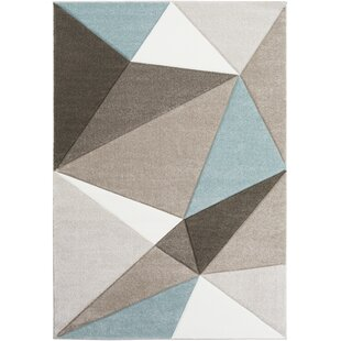Inexpensive Browne Gray/Blue/Brown Area Rug By Trule Teen
