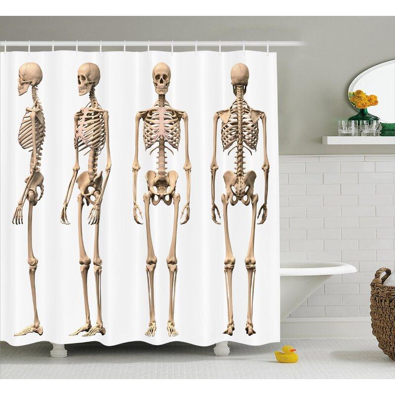 Ambesonne Human Anatomy Man Male Human Skeleton Skull Different ...