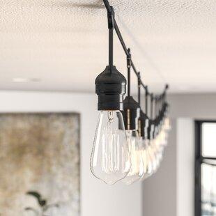Crivello 20 ft. 10-Light Standard String Light