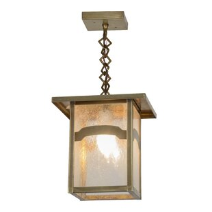 Hyde Park Mountain View 1-Light Square/Rectangle Pendant by Meyda Tiffany