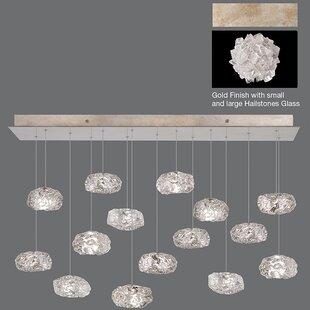 Fine Art Lamps Natural Inspirations 15-Light Cluster Pendant