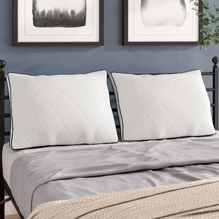 Alwyn Home Goose Quilted Down and Feathers Pillow (Set of 2)