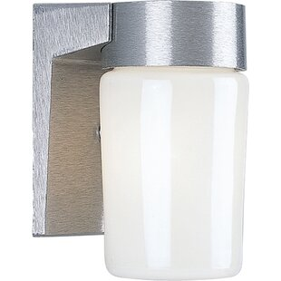 Mcneil 1-Light Outdoor Sconce