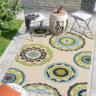 Barkley Beige/Green Indoor/Outdoor Area Rug