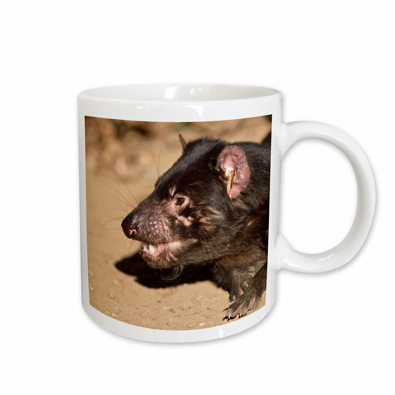 East Urban Home Australia Tasmanian Devil Wildlife Coffee Mug Wayfair