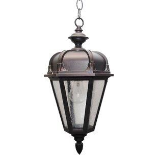 Flannigan 1-Light Outdoor Hanging Lantern