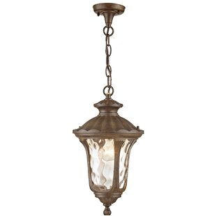Gurnee 1-Light Outdoor Hanging Lantern