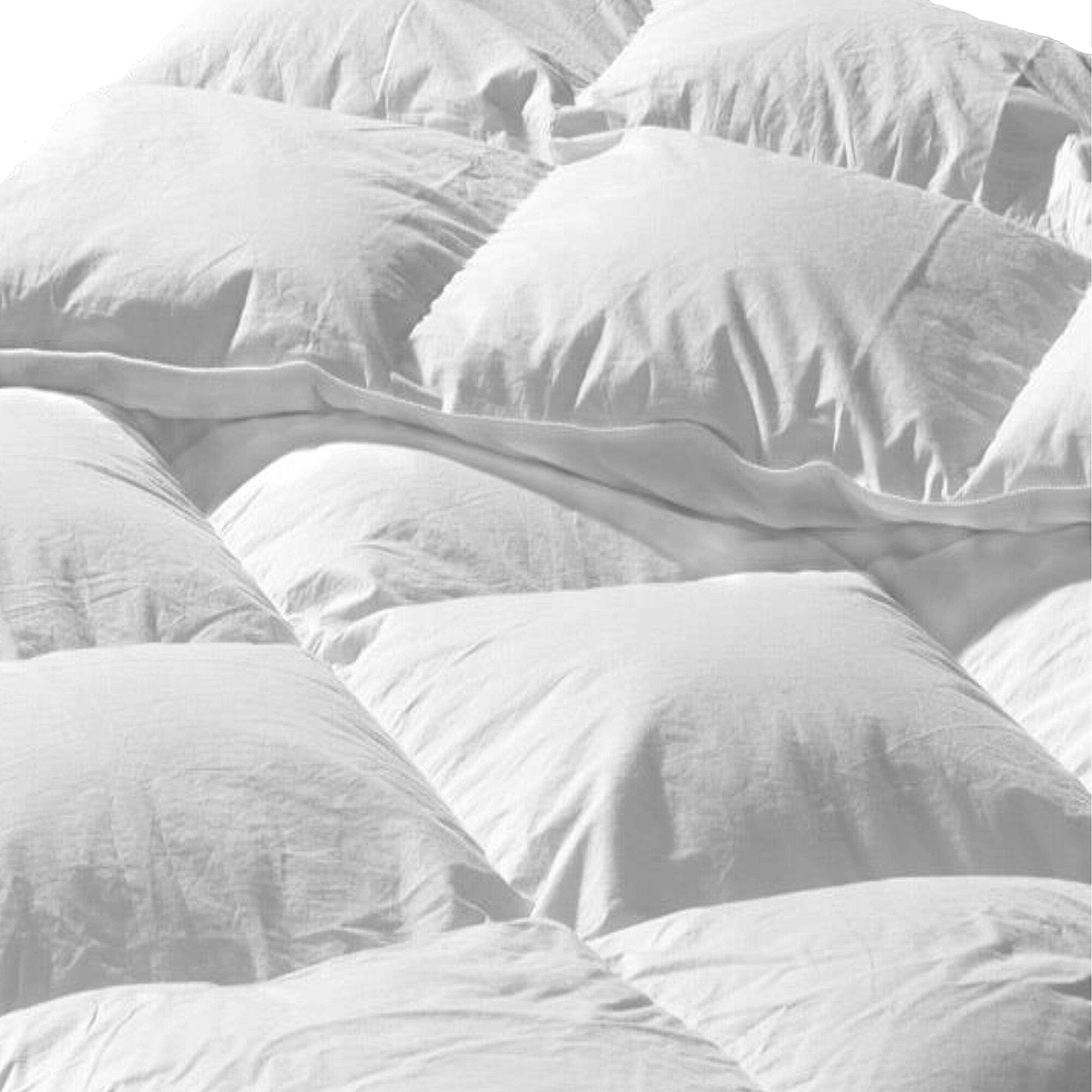 Simply Down Hermione Premium Hungarian Summer Down Comforter Wayfair