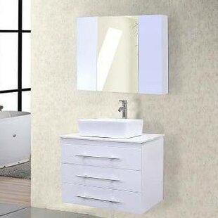 Shopping for Newcastle 30 Single Bathroom Vanity Set with Mirror ByBrayden Studio