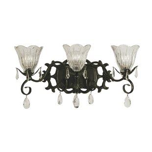 Mallie 3-Light Vanity Light by Astoria Grand
