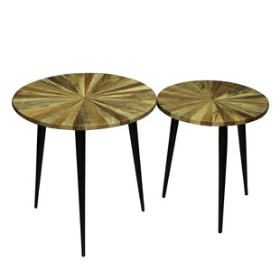 Andes 2 Piece End Table Set by Foundry Se..