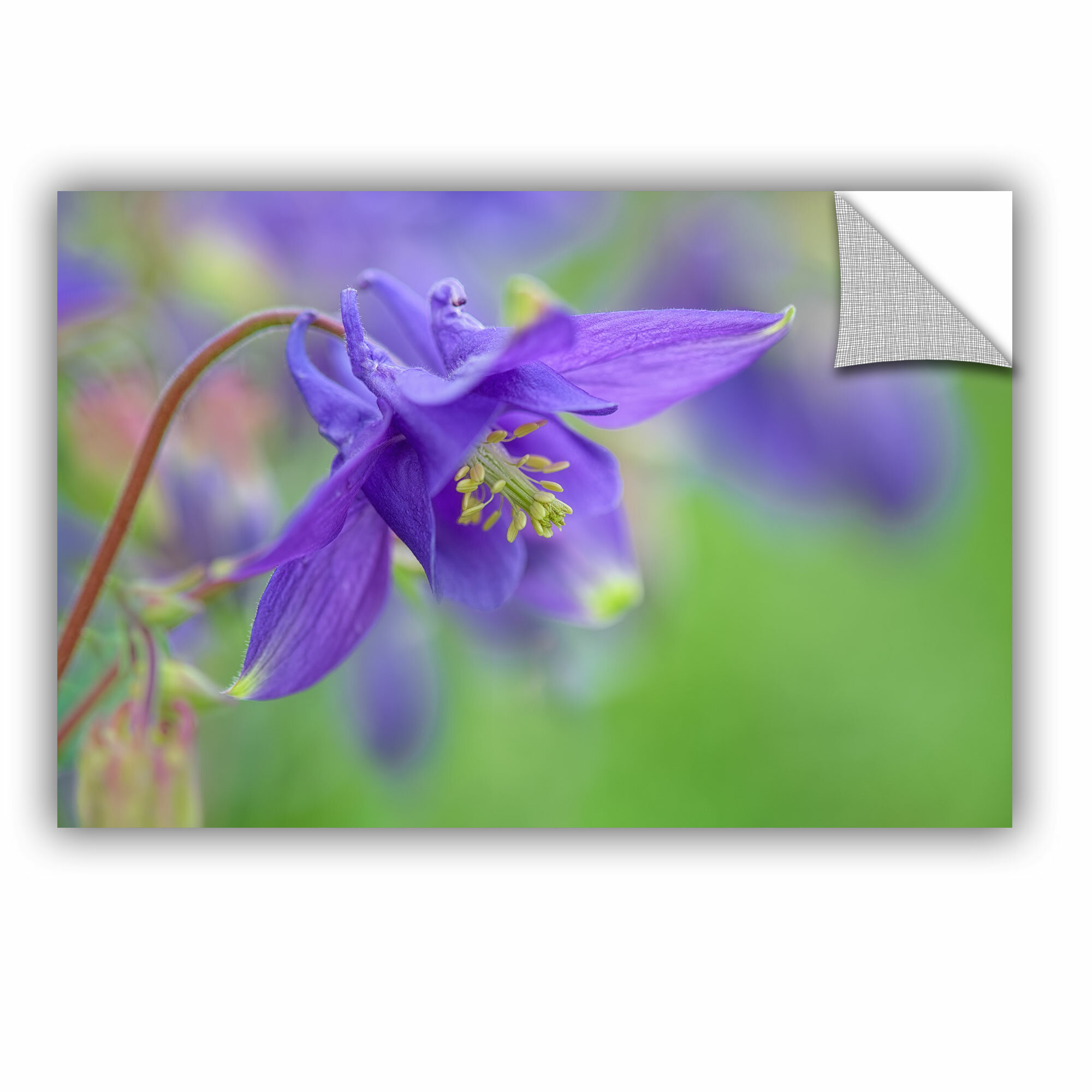 House of hampton blue columbine removable wall decal wayfair izmirmasajfo