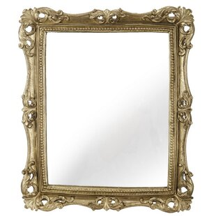 Coupon Biermann Rectangle Gold Framed Wall Mirror By Astoria Grand