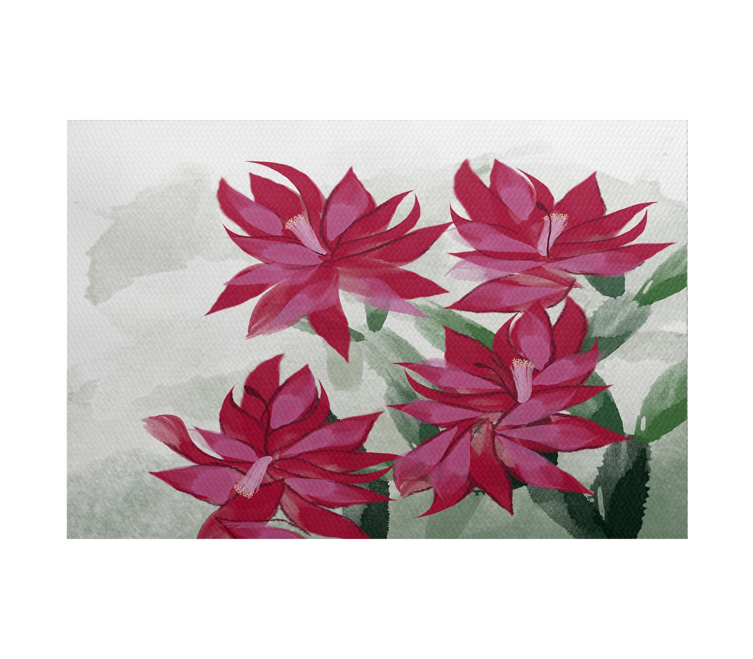August Grove Cactus Flatweave Pink Green Rug Wayfair