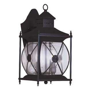 Darby Home Co Ozias 2-Light Outdoor Wall Lantern