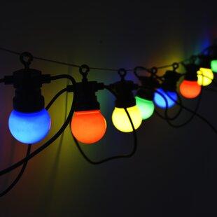 North 12-Light Festoon Light By The Seasonal Aisle