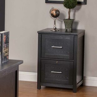 Powell 2-Drawer Vertical File by Latitude Run Top Reviews