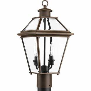 Darby Home Co Gunnora 2-Light Lantern Head