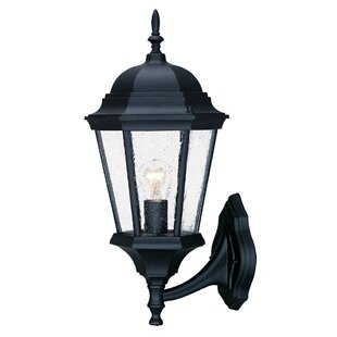Reviews Bellver Outdoor Sconce By Astoria Grand